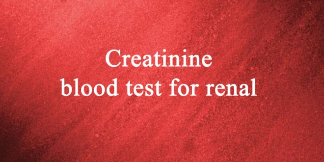 Creatinine blood test for renal