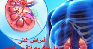 أمراض الكلى معلومات مهمة