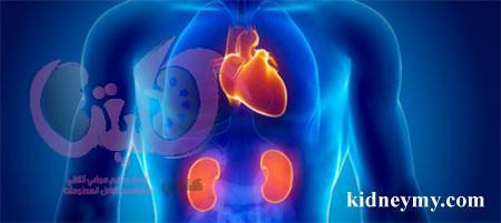 النظام الغذائي لمرضي القلب مع غسيل الكلي