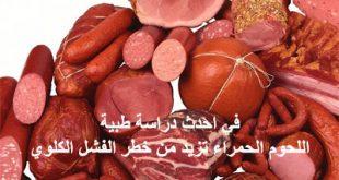 اللحوم الحمراء مرتبطة بالفشل الكلوي