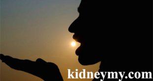 تكوين فيتامين د في الجسم