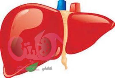 علاج فيروس بي الكبدي بروتوكول ومراحل العلاج