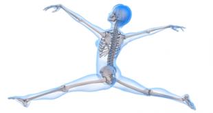 العظام والاطعمة الصحية