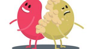 مراحل اعتلال الكلي السكري