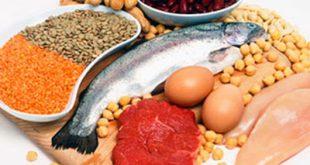 نصائح البروتين لمرضى غسيل الكلى
