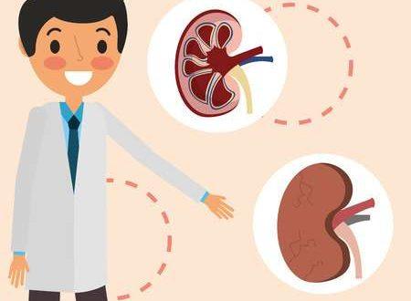 كيف يمكن للمرضى تأخير غسيل الكلى؟ مجلة الأكاديمية الأمريكية للتغذية