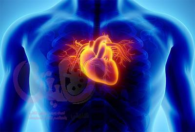 كيف تتجنب امراض القلب