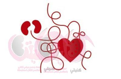 العلاقة بين أمراض القلب وأمراض الكلى