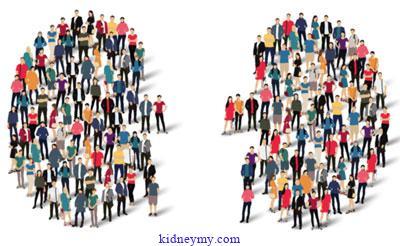 علاج مرض الكلى في نهاية المرحلة وفقا لاخر ما توصل الية الطب