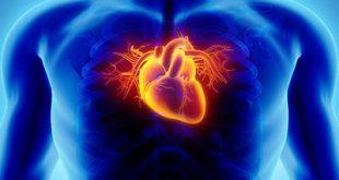 اخطر أمراض تصيب القلب تتطلب عناية فائقة