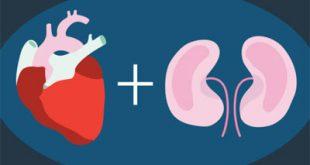 صحة قلبك مع علاجات غسيل الكلى