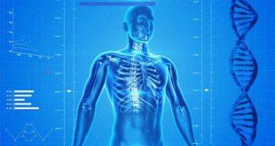 علاجات للسيطرة على مستويات الفوسفور في الدم