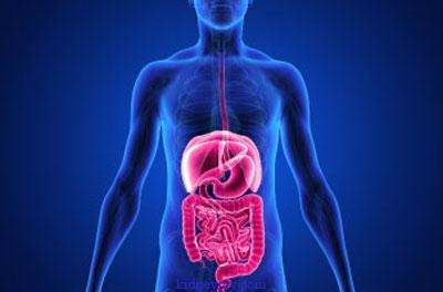 علاج مشاكل المعدة والجهاز الهضمي لمرضى غسيل الكلى بالعلاجات المنزلية