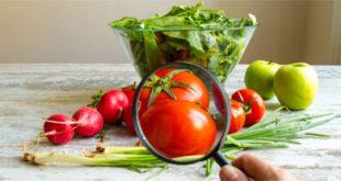 سلامة الغذاء وأمراض الكلى والأمراض المنقولة
